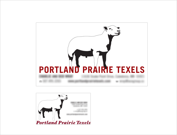 Portland Prairie Texels Business Card